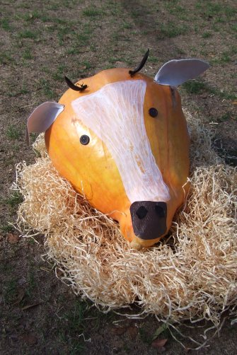 We were quite taken with this pumpkin cow.