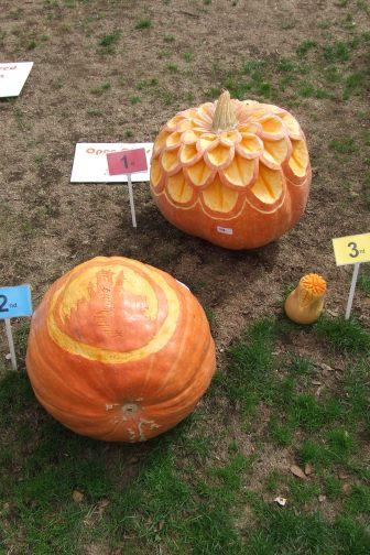 Best Carved Pumpkin.