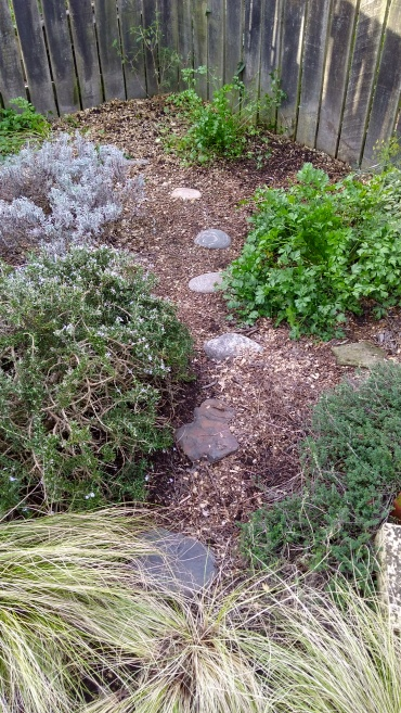 Some of the other herbs: rosemary, lavender, parsley and lemon thyme.