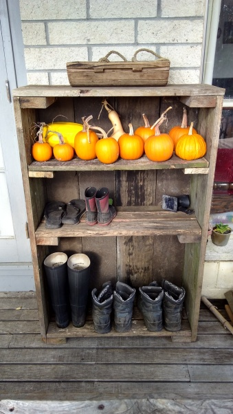 Plenty of room for the outdoor shoes and other things, like pumpkins.