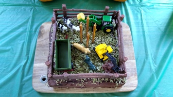 The Little Fulla's cake was a farmyard. The avocado-coloured dessicated coconut was a late night stroke of genius.