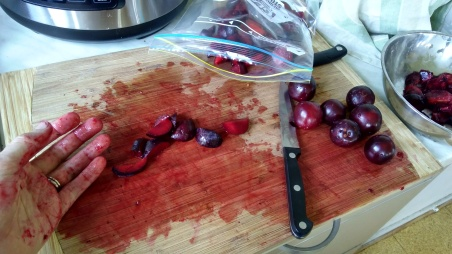 It isn't a murder scene, we're just chopping the plums.